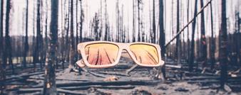 Sequence -Oak w/ Dragon's Blood Lens