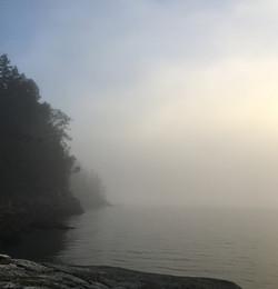 ocean and fog