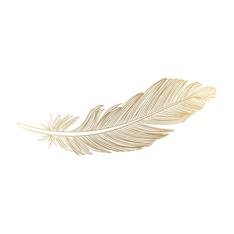 Feather-PNG-Download-Image-1.png