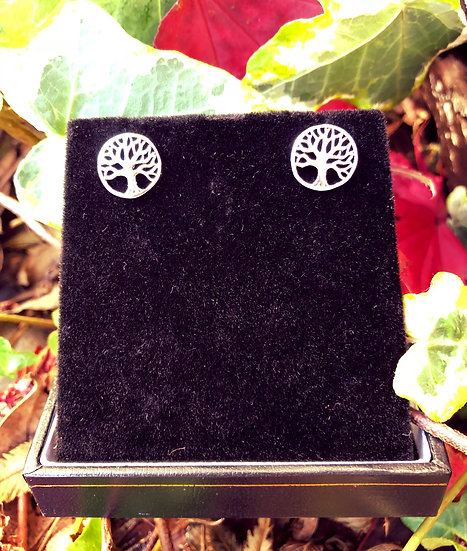 """Tree of Life Stud Earrings with 6""""x4"""" Signed Photo"""