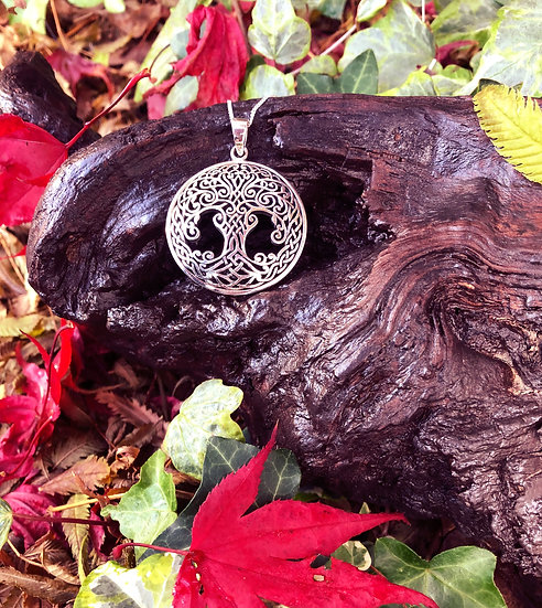 """Large Celtic Tree of Life Pendant with 6""""x4"""" Signed Photo"""