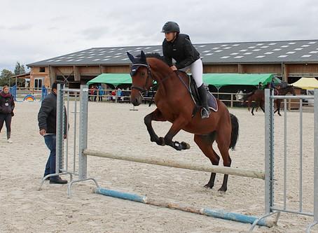 Fête du cheval : dépasser les obstacles du handicap