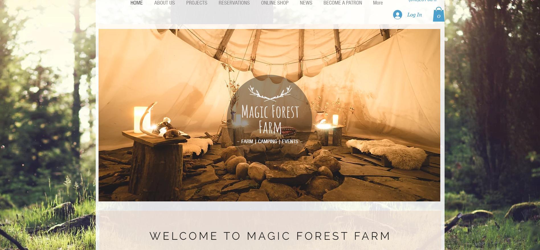 Magic forest farm - New York, USA