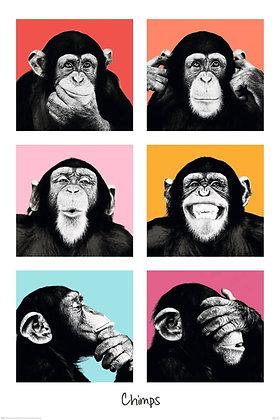 Placa Decorativa Monkey