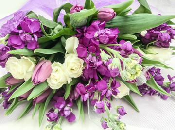 Matthiola, Rose and Tulip