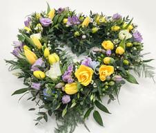 Tulip, Daffodil and Freesia