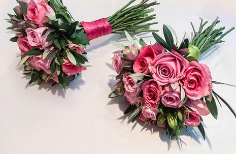 Shades of Pink Rose