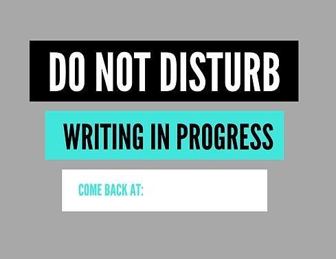 DO NOT DISTURB (1).png