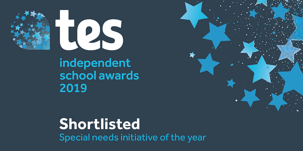 TES independent school awards