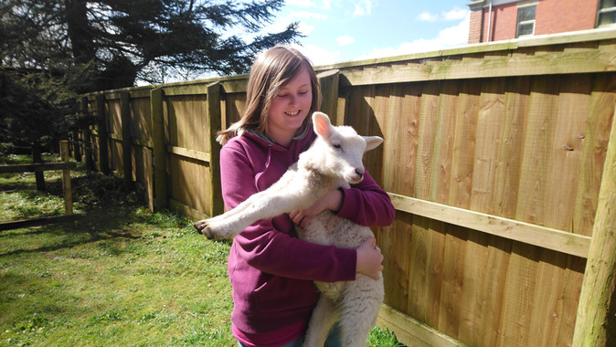 Children go all sheepish at Highgate Hill House School!