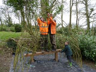 Highgate Hill House School pupils help to create living willow structure