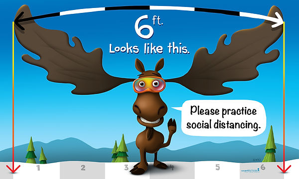 48x80_6 feet social distancing moose_pri