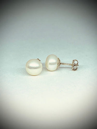 White Freshwater Button Pearl Studs