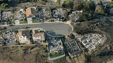 houses that didn't burn.jpg