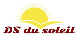 DS DU SOLEIL LOGO ENTREPRISE.png