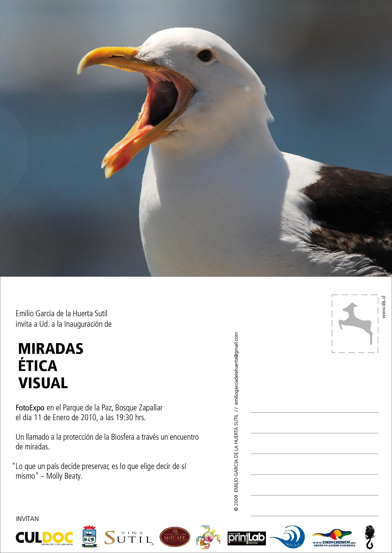 Postal Miradas Etica Visual