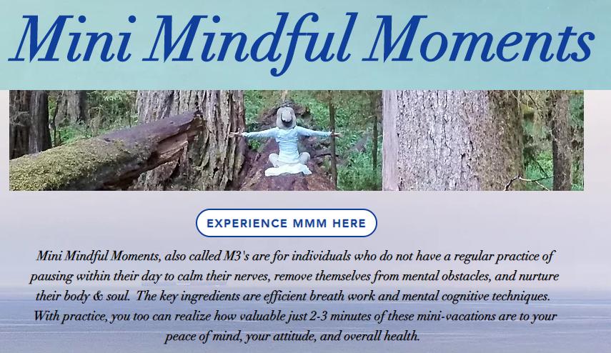 MMM website screenshot.png