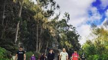 Remote Year Ohana Month 11 - Ecuador and Bogota