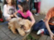 CEMAE cachorro.jpg