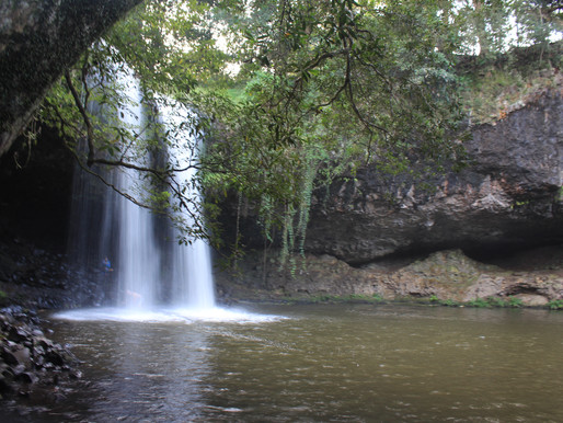 Hiking Guide: Killen Falls