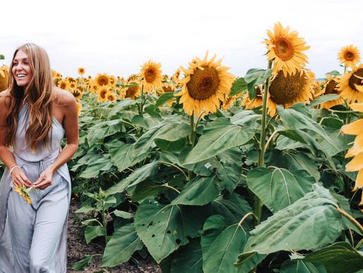 Bucket List #32: See the Sunflower Fields in Warwick