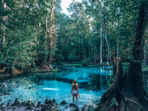 Fresh water springs in Florida