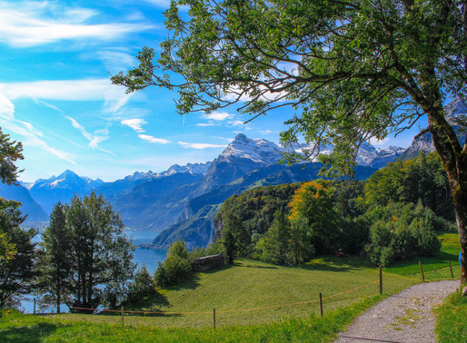 Hiking Guide: The Swiss Path