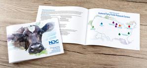 DMI Brochure.jpg
