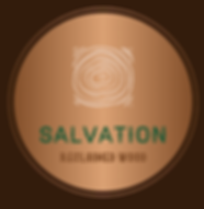 Salvationlogo.png