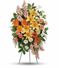 0003414_540 - Treasured Lily $156.jpeg