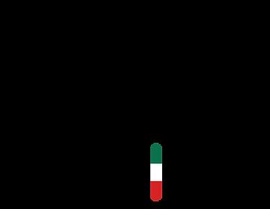 SFM-logo-2019.png