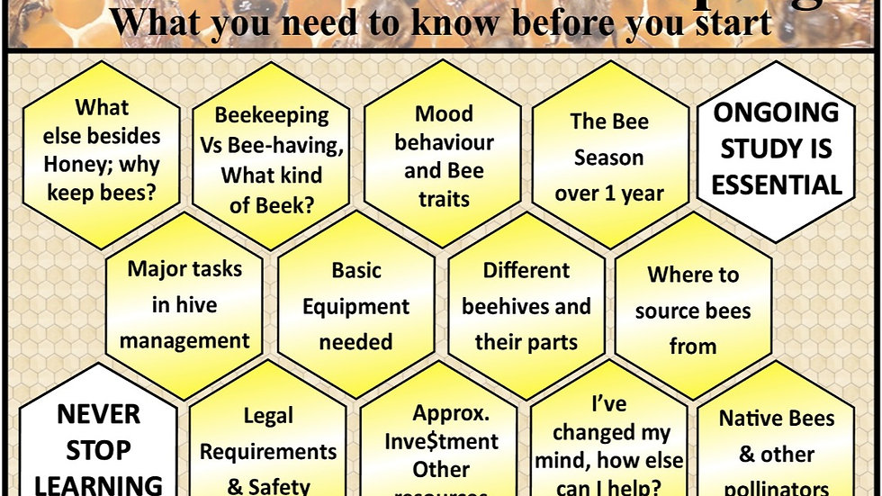 Basic Intro to Beekeeping in Victoria