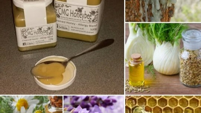 Creamed Honey - Allergy Blend
