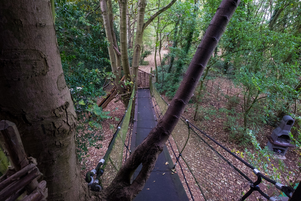 Rope Bridge Exit