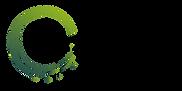 logo horizontal (2).png