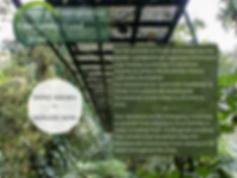 Copy of Copy of Monteverde's Emergency F