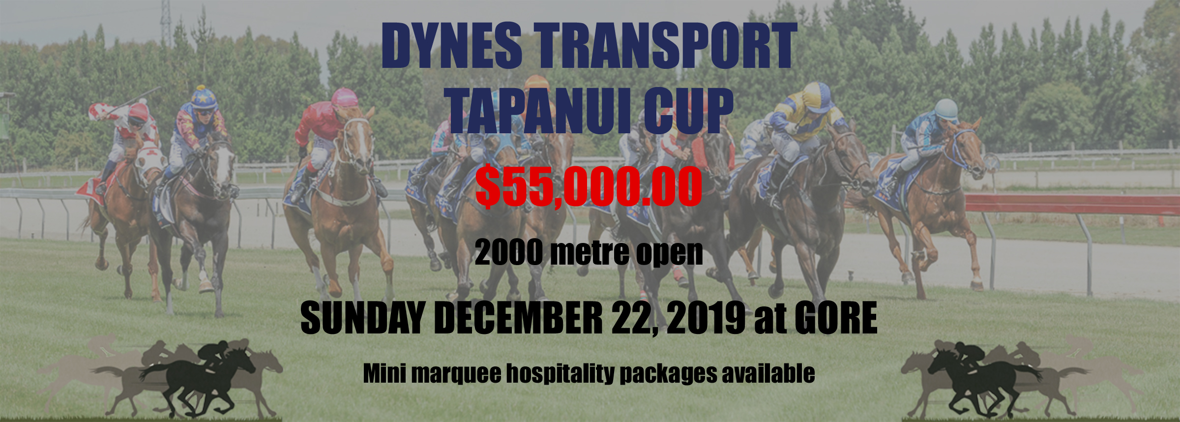 Tapanui_Cup_Ad