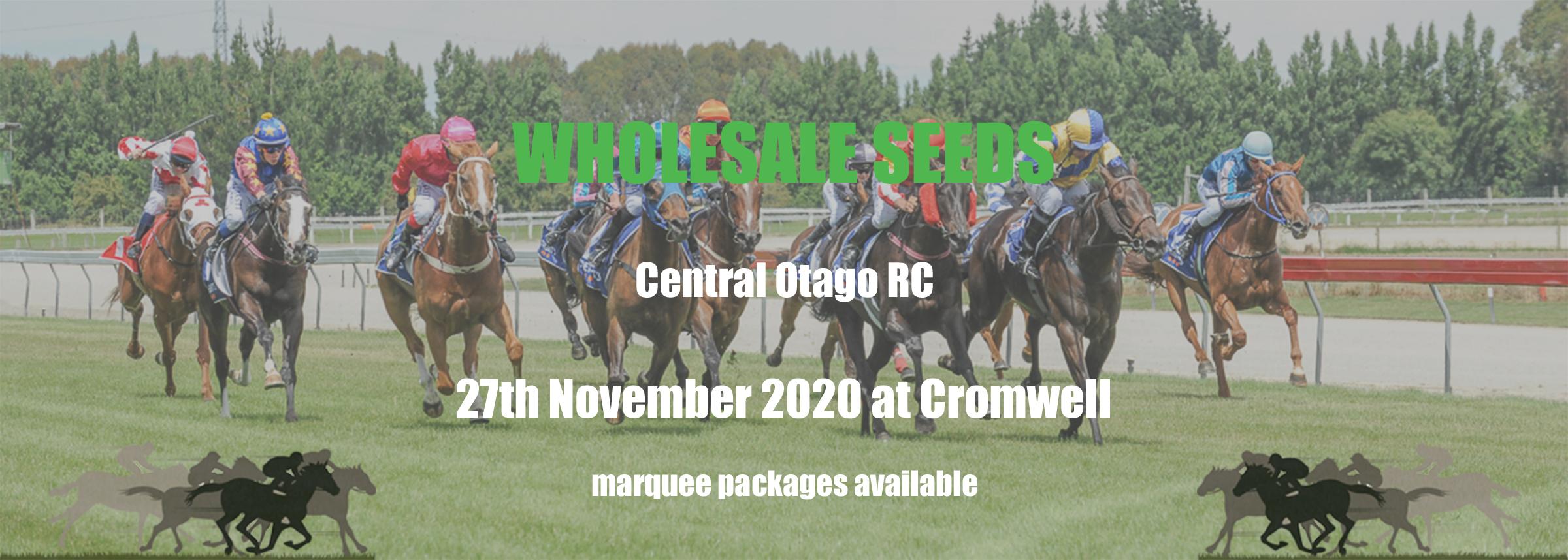 Central_Otago_RC_Ad_2020