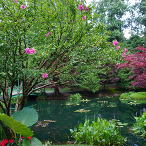 GIBBS GARDENS -- Year-Round Festivals of Color and a Great Place for Social Distancing