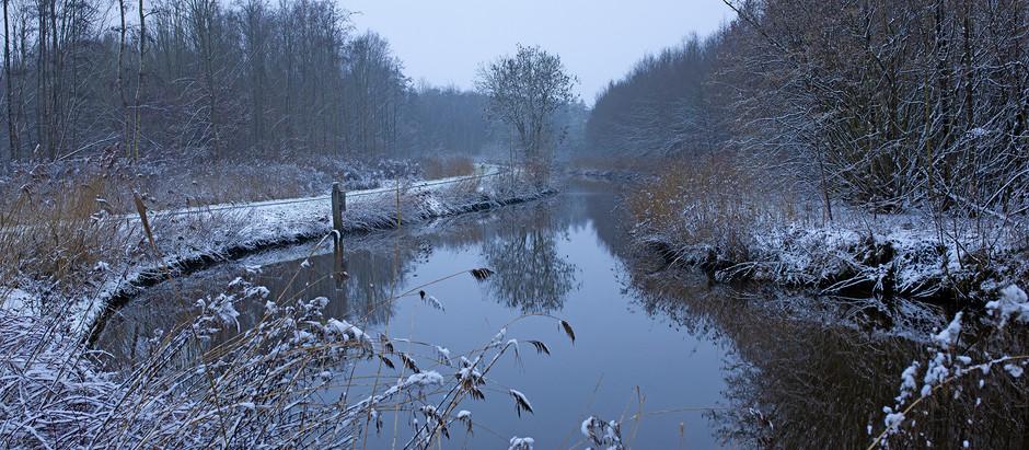 Week 18 #mijnmuzebos (Winter)