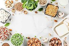 alternative-protein0194074311lin15556548
