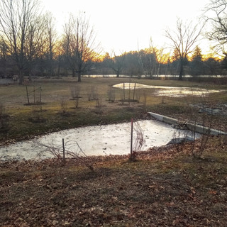 Stormwater BMP