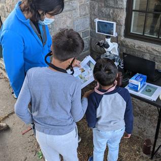 Cyanoscope volunteer program