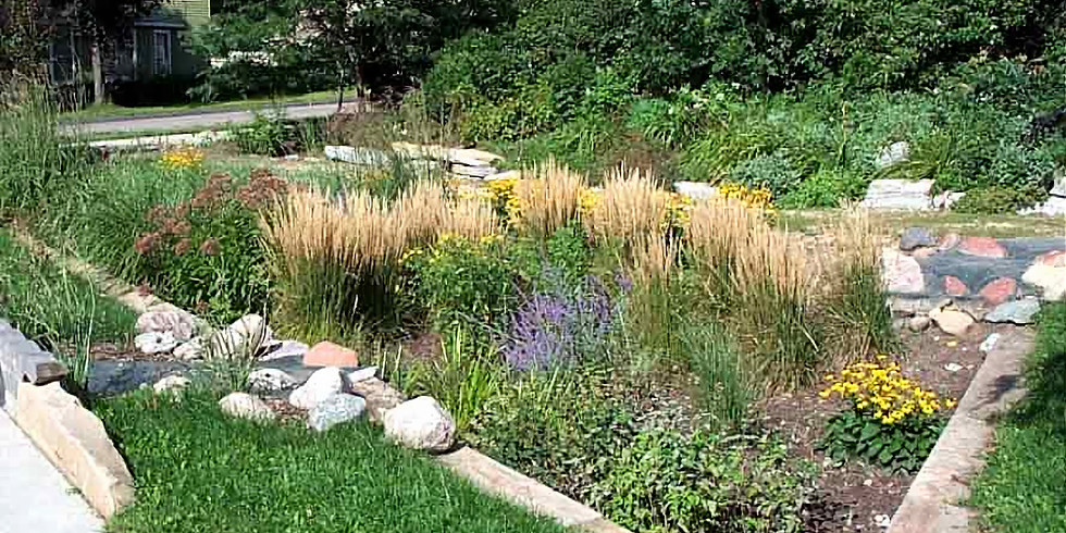 A Residential Guide to Stormwater