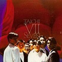 太極  Taichi VII