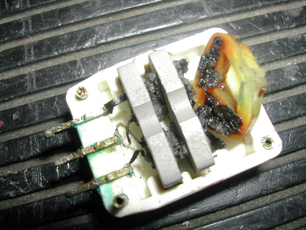 Bird Golden Eagle 2/15 Reverb Cartridge Damage