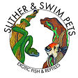 slither and swim pets.jpg