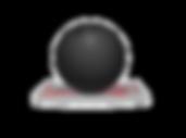 ORTHOFLX BOWLING BALL 1.png