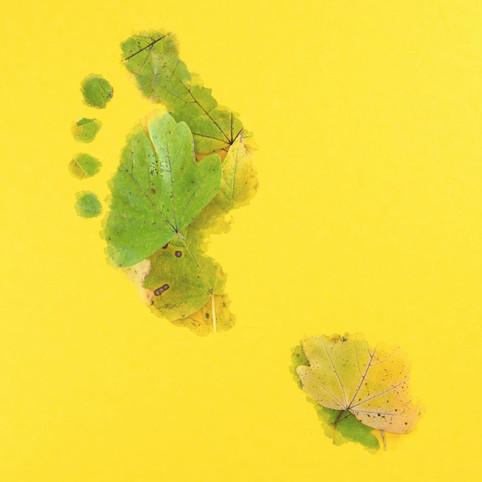 Leaf Footprint by JR Productions Julia Rettenmaier