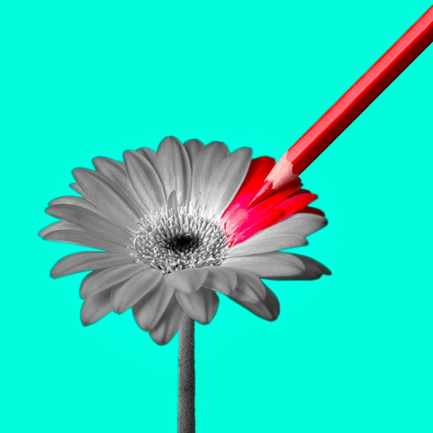 Coloring Flower by JR Productions Julia Rettenmaier